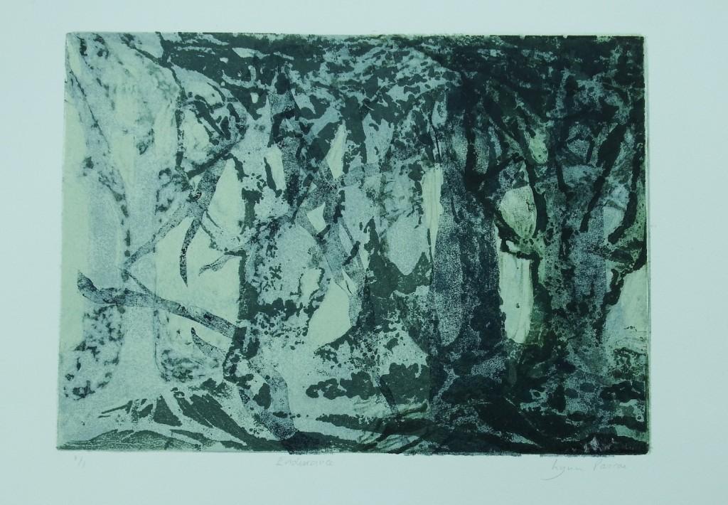 Endurance by Lynn Pascoe